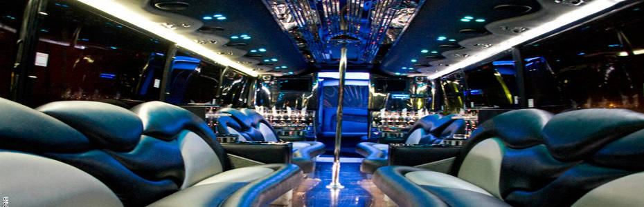 Fun Party Bus - Luxury Beyond Compare!